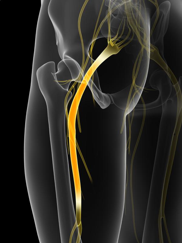 Exercises For Sciatica Exercises For Sciatica Pain In Leg